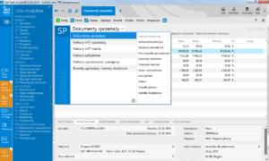 subiekt nexo modul_sprzedaz_i_jego_widoki dsg software